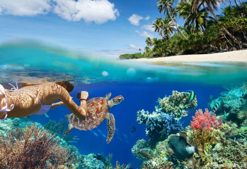 Najlepsze aparaty do fotografowania pod wodą i ze wzmocnioną konstrukcją | zdjęcie 1