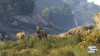 GTA V na PC zaliczy poślizg - Rockstar tłumaczy dlaczego | zdjęcie 8