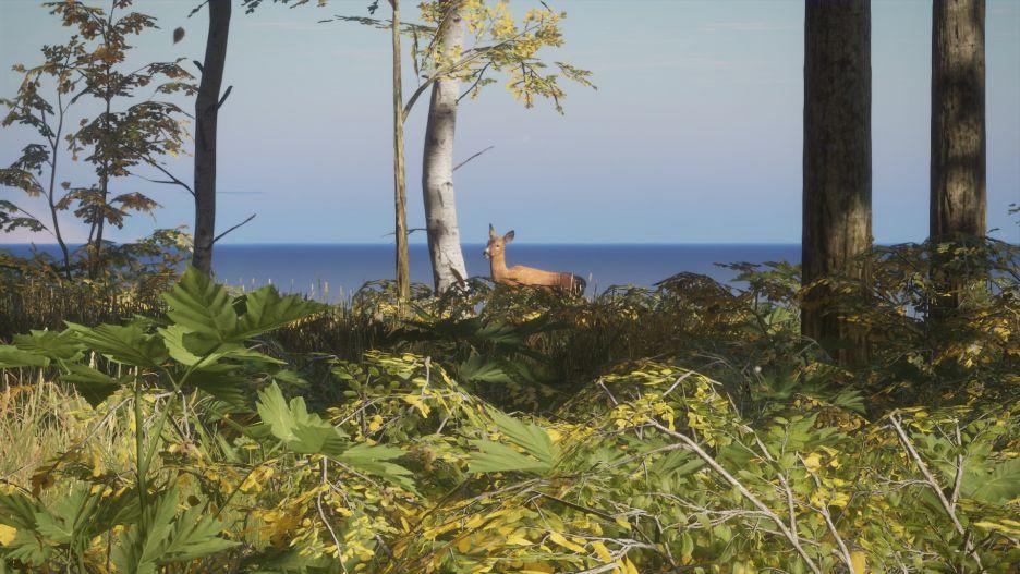 theHunter: Call of the Wild -  łowy w pięknych okolicznościach przyrody | zdjęcie 2
