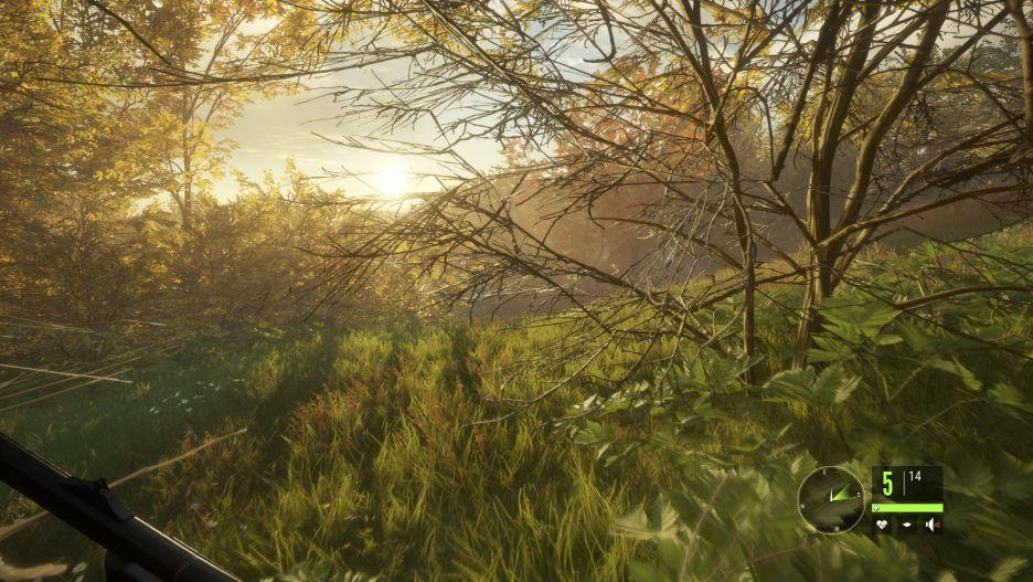 theHunter: Call of the Wild -  łowy w pięknych okolicznościach przyrody | zdjęcie 1