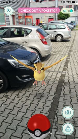 Pokemon Go - Pidgey