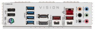 Gigabyte Z590 Vision G - задняя панель