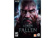 Lords of The Fallen [PC]
