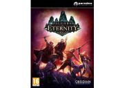 Pillars of Eternity [PC]