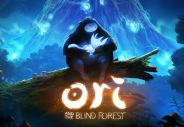 Ori and the Blind Forest [PC]