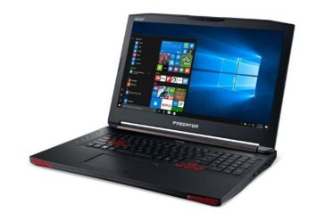 Acer Predator 17 G5-793 (NH.Q1XEP.001)