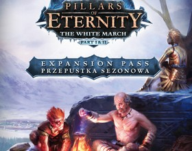 Pillars of Eternity: The White March - dwa dodatki w jednym pudełku