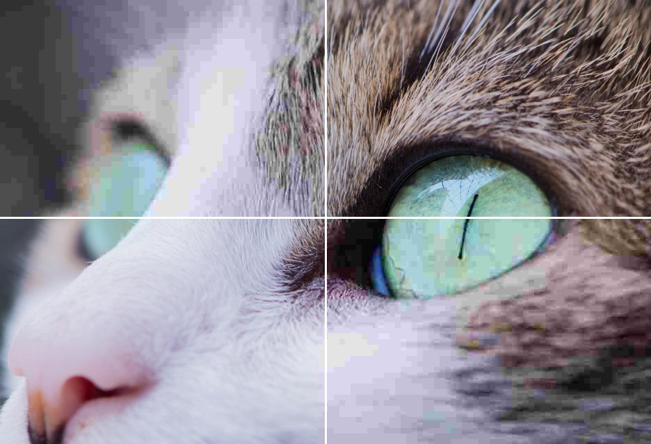 Algorytm Google Guetzli - redukuje rozmiar JPEG o 35% - a ile naprawdę jest wart?