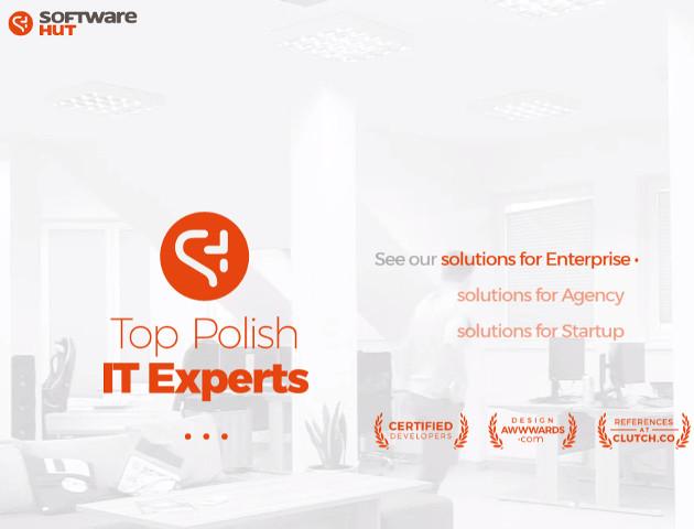 Regionalna dwulatka wśród najszybciej rosnących firm IT w Polsce
