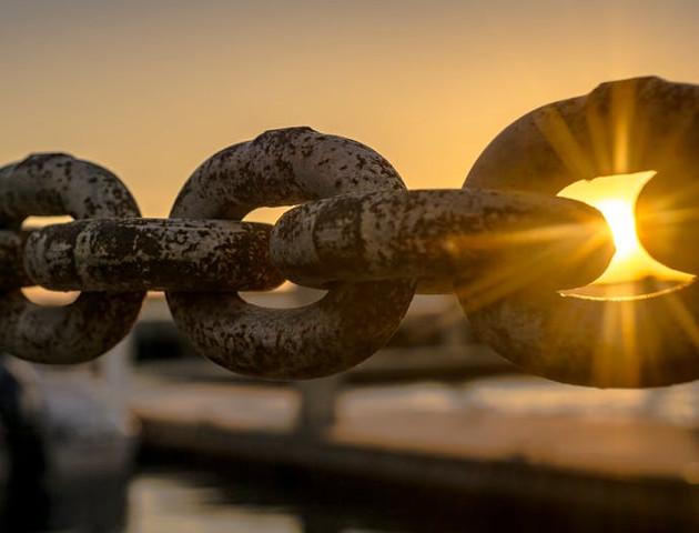 Programista Blockchain może dobrze zarobić