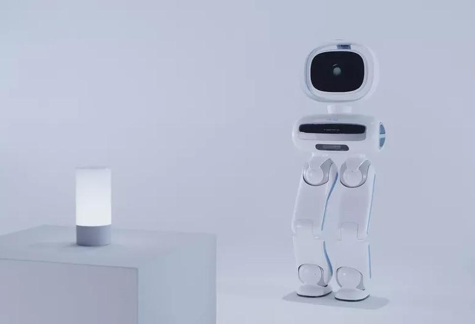Walker - robot do (patrolowania) mieszkania