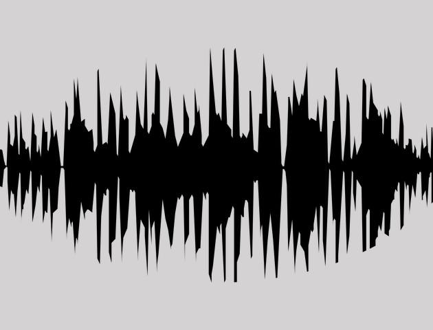 Przeglądarka internetowa sterowana głosem