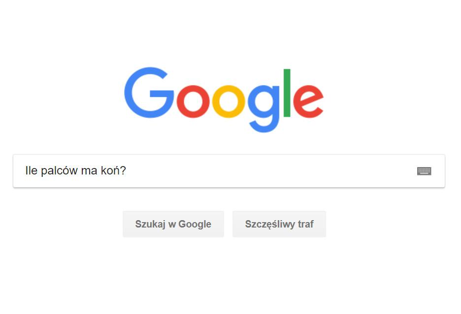 Oto czego szukaliśmy w Google w 2018 roku