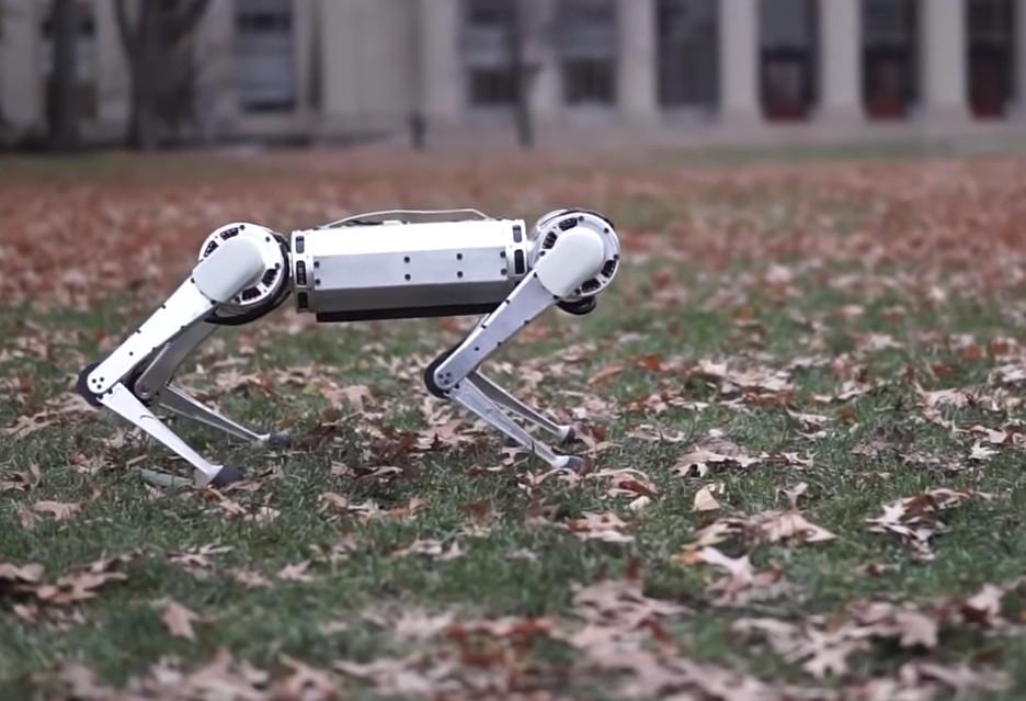 Ten robot to najlepsze co dziś zobaczycie - MIT Mini Cheetah robi wrażenie