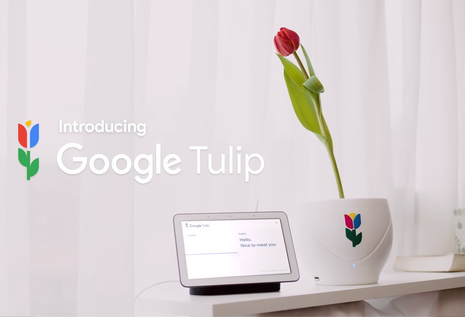 Google Tulip - pogadaj ze swoim tulipanem [Prima Aprilis]