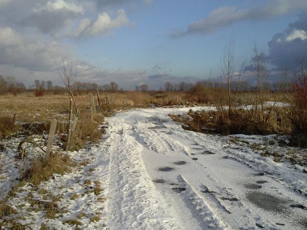 LG L9 zimowy krajobraz