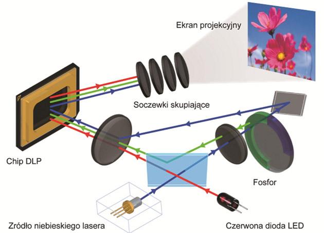 Casio-laser-led | Bez kategorii |