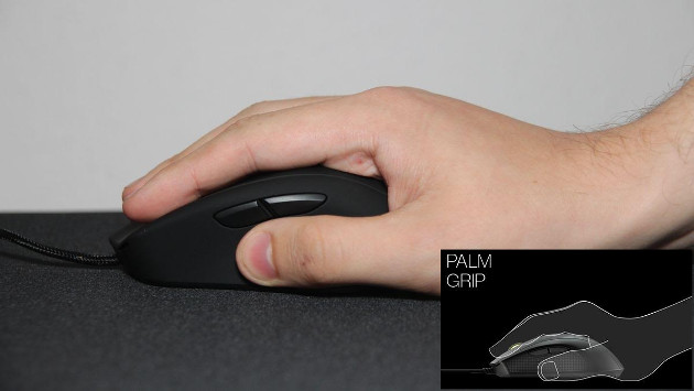 Mionix palm