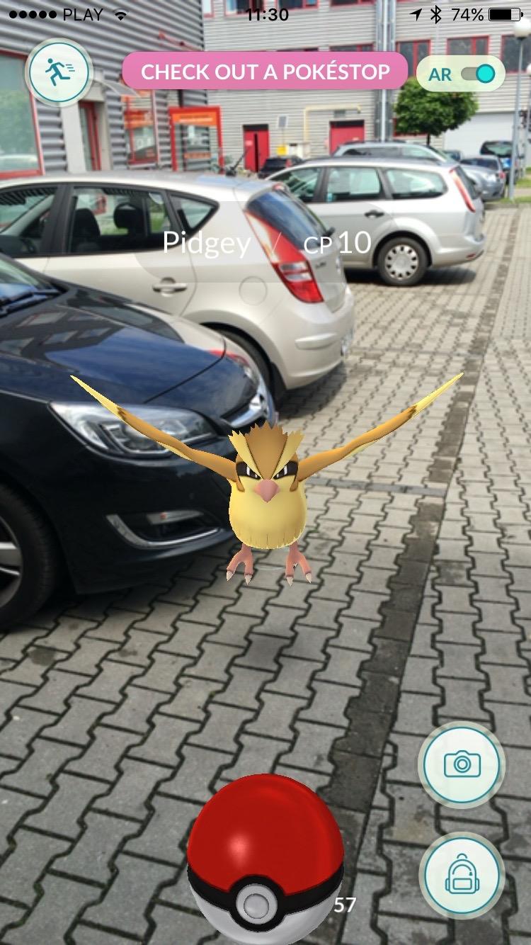 Pokemon Go - Pidgey