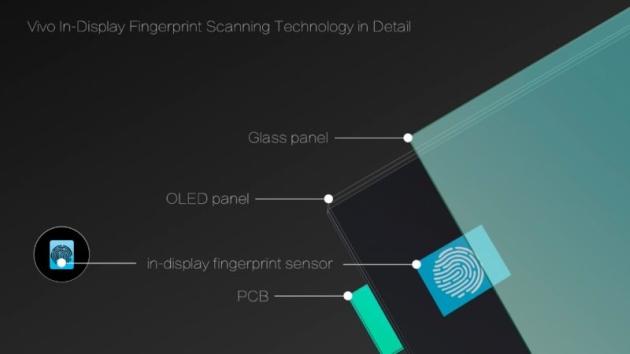 Smartfon z czytnikiem linii papilarnych wbudowanym w ekran