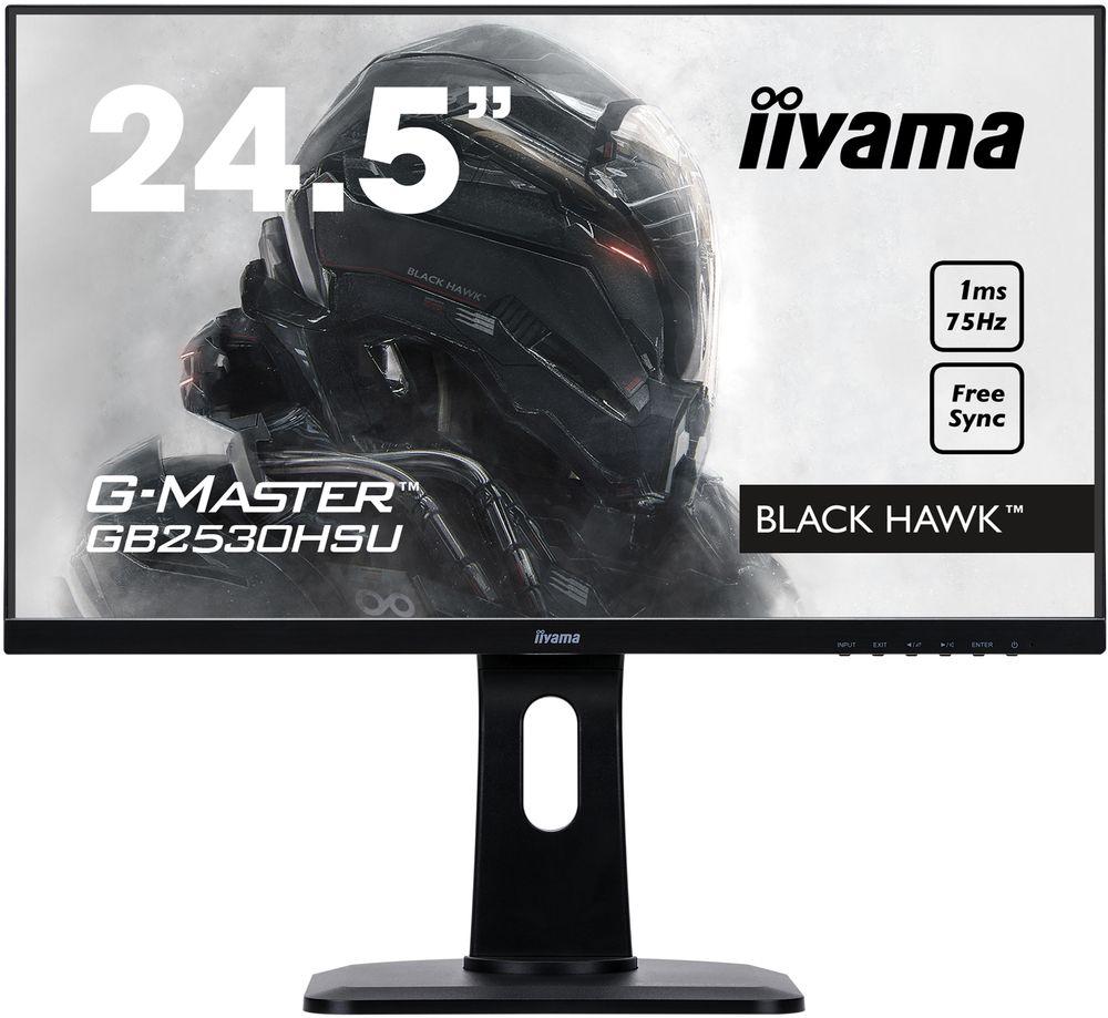 iiyama G-Master GB2530HSU-B1