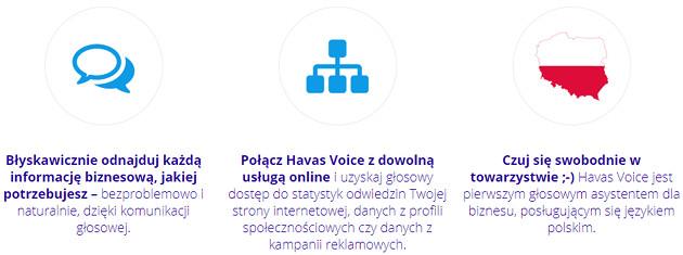 Havas Voice info
