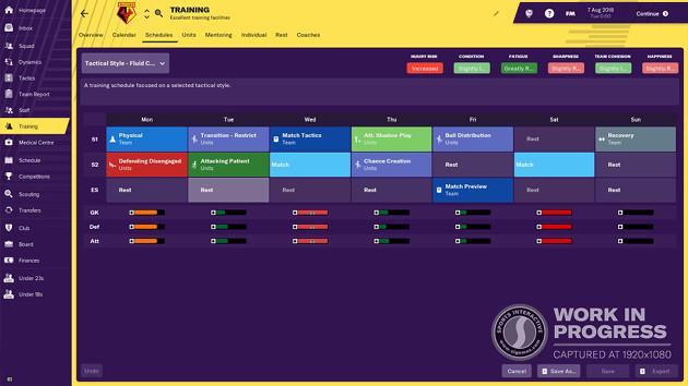 Football Manager 2019 trening