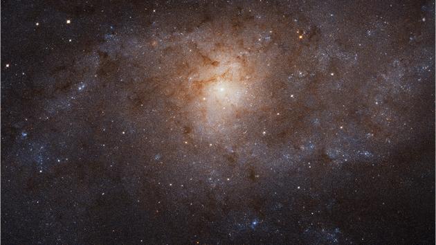 M33 w obiektywie Hubble'a