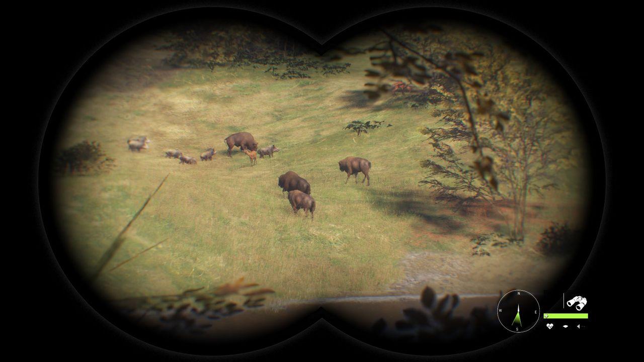 theHunter: Call of the Wild - obserwacja zwierząt przez lornetkę