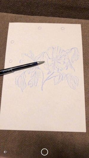 iPhone 8 Plus arkit sketchar