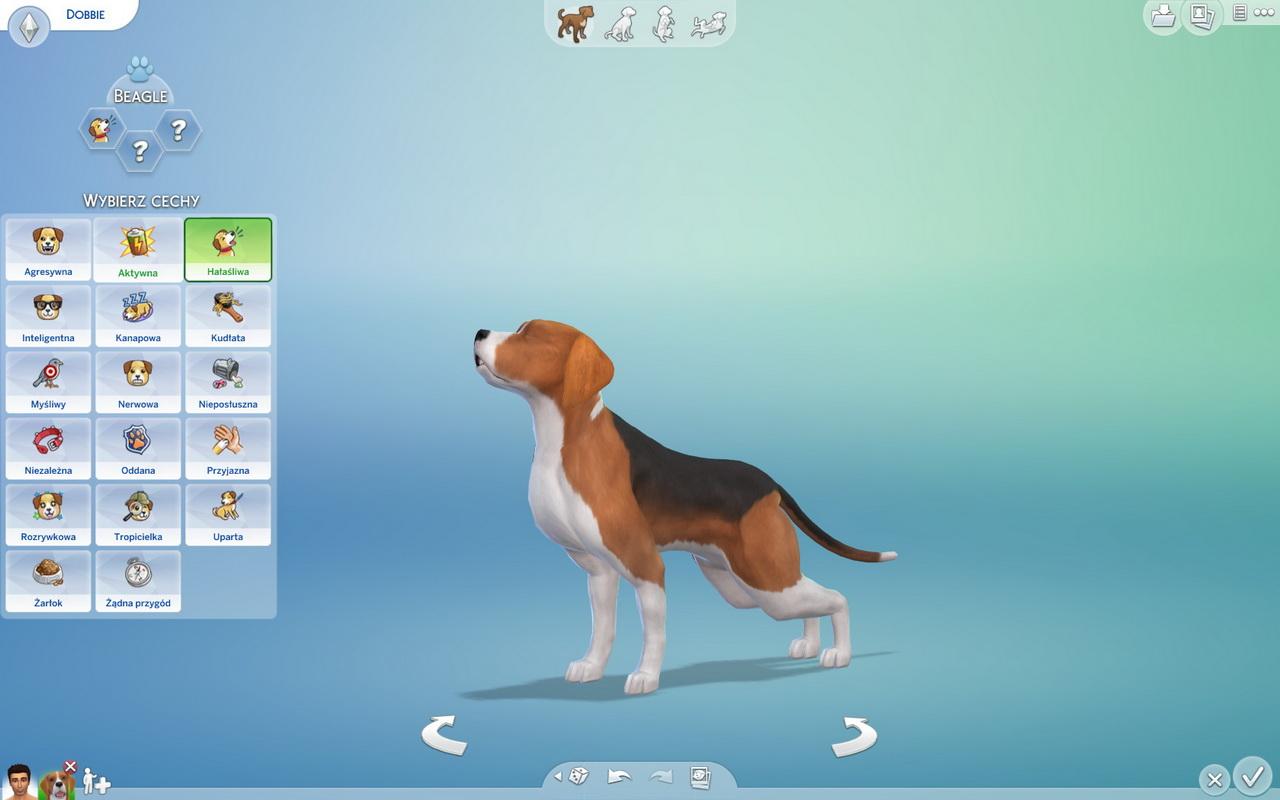 The Sims 4: Psy i koty - energetyczny beagle