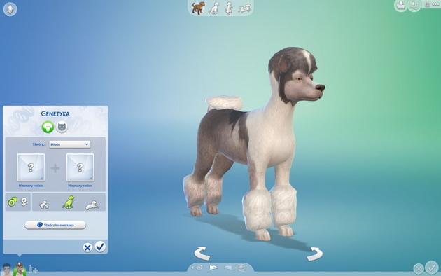 Poradnik do The Sims 4: Psy i koty - genetyka