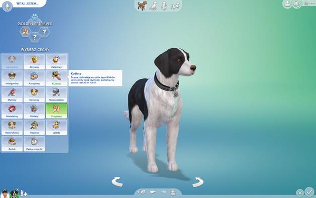 Poradnik do The Sims 4: Psy i koty - zakładka genetyka