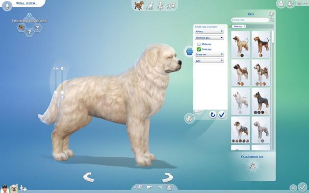 Poradnik do The Sims 4: Psy i koty - wybór rasy