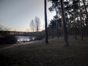 Wiko View przykładowe zdjęcie aparat główny