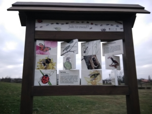 Wiko View przykładowe zdjęcie aparat przedni