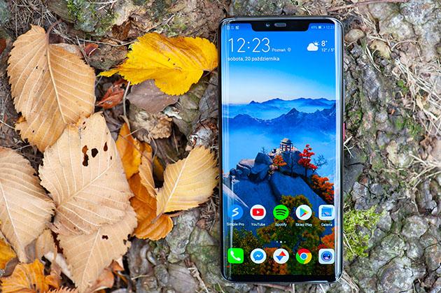 Huawei Mate 20 Pro ekran amoled